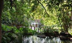 The-Cascades-gardens.jpg
