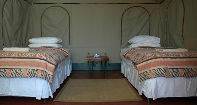 safari-tent-2.jpg